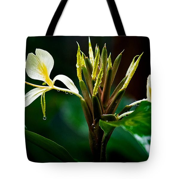 Rain Refreshed Tote Bag by Christopher Holmes