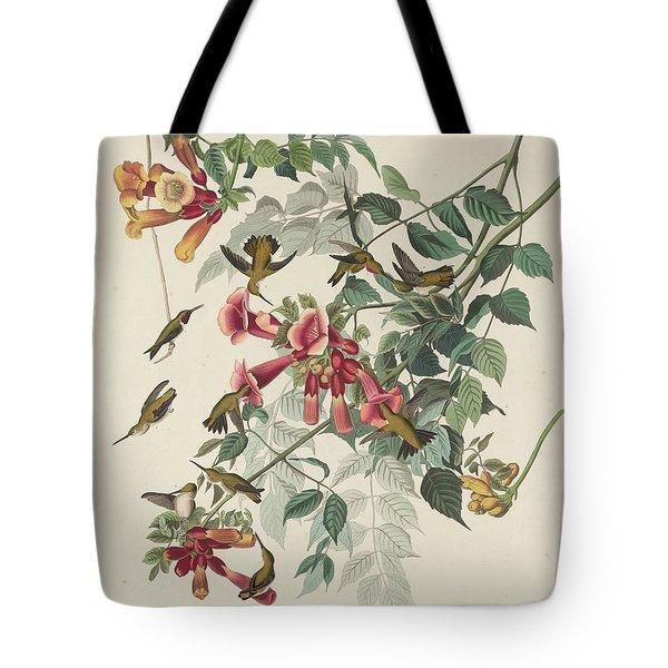 Ruby-throated Hummingbird Tote Bag by John James Audubon