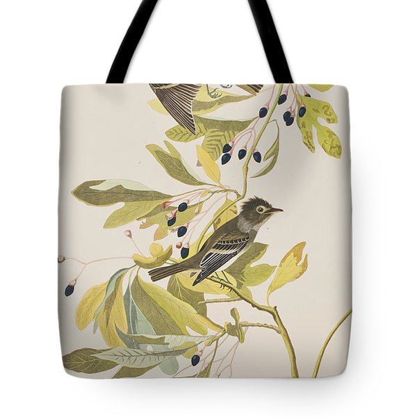 Small Green Crested Flycatcher Tote Bag by John James Audubon