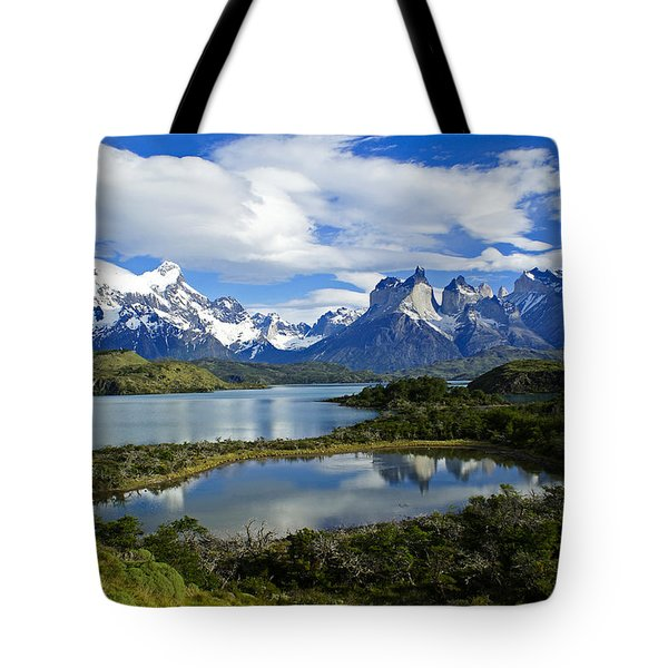 Springtime In Patagonia Tote Bag by Michele Burgess