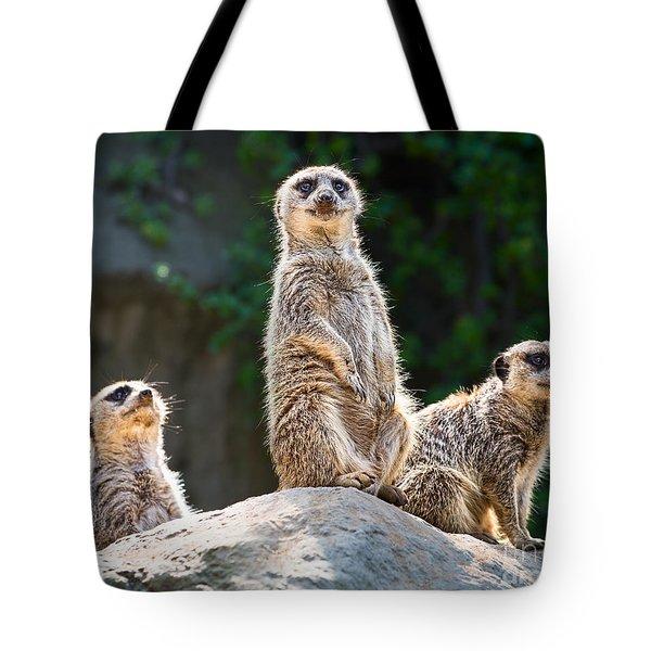 Three's Company Tote Bag by Jamie Pham
