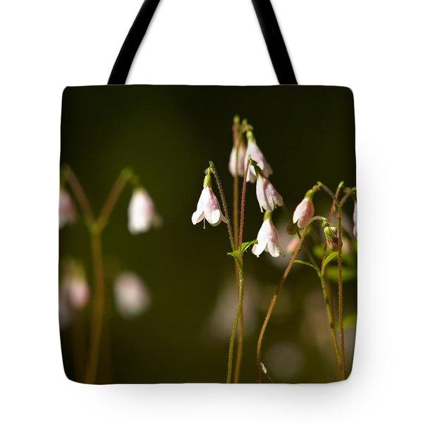 Twinflower Tote Bag by Jouko Lehto
