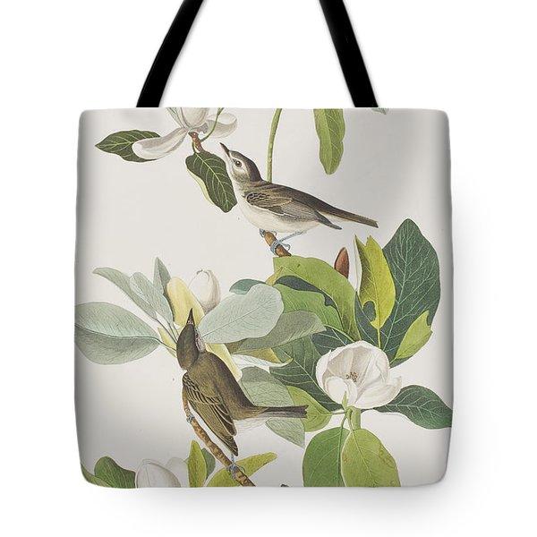 Warbling Flycatcher Tote Bag by John James Audubon