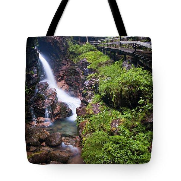 Waterfall Tote Bag by Sebastian Musial
