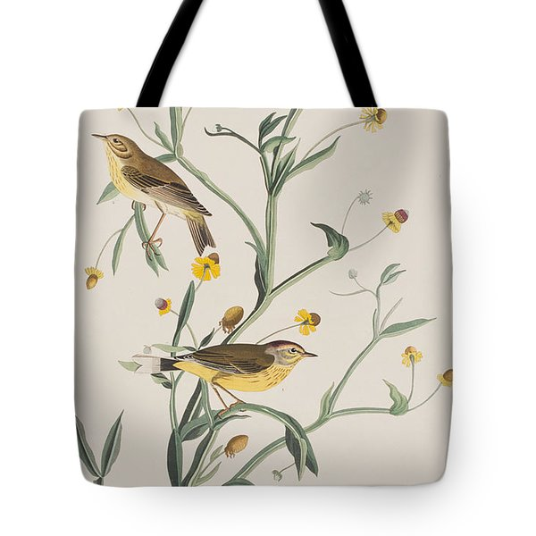 Yellow Red-poll Warbler Tote Bag by John James Audubon
