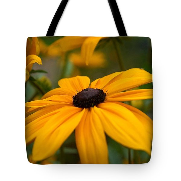 Goldilocks Gloriosa Daisy 2 Tote Bag by Jouko Lehto