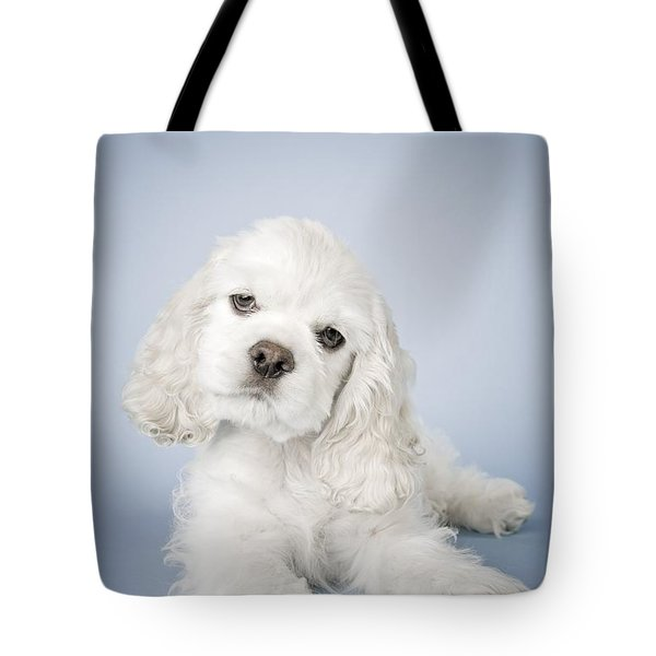 Cocker Spaniel Tote Bag by David DuChemin