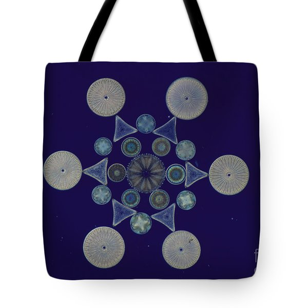 Diatom Arrangement Tote Bag by M. I. Walker