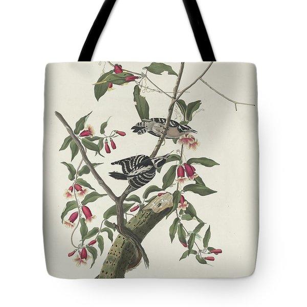 Downy Woodpecker Tote Bag by John James Audubon