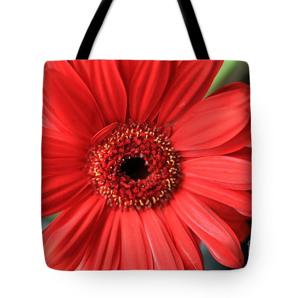 Gerbera Tote Bag by Amanda Barcon