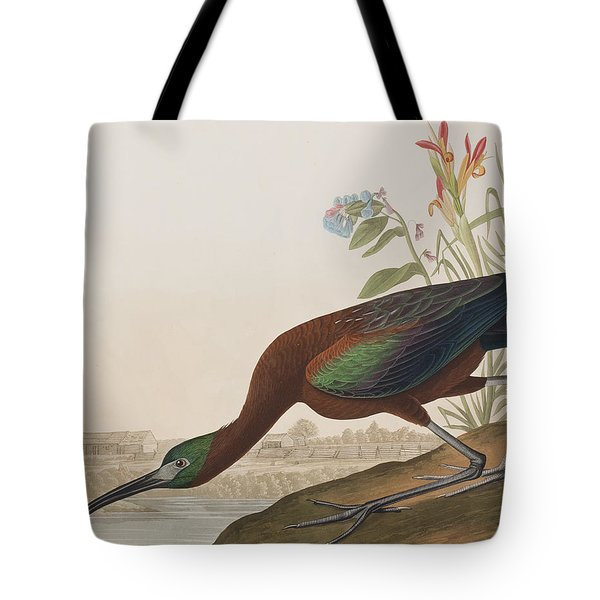 Glossy Ibis Tote Bag by John James Audubon