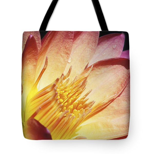 Pink Water Lily Tote Bag by Bill Brennan - Printscapes