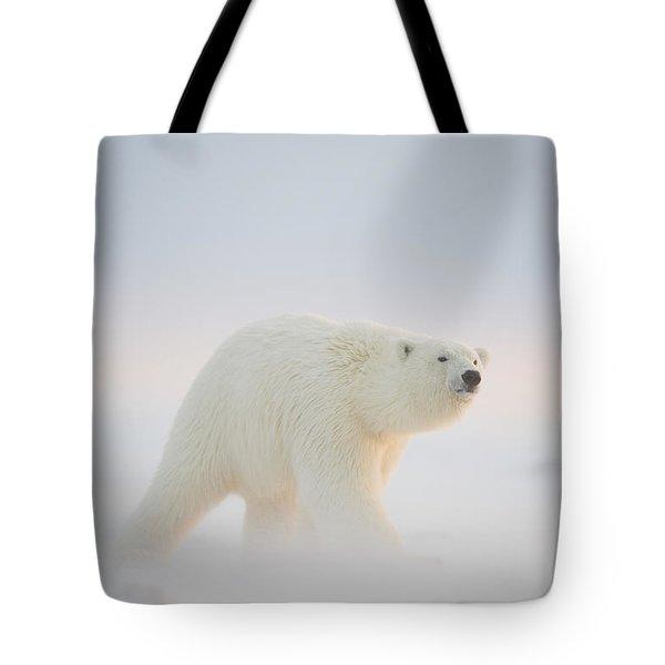 Polar Bear  Ursus Maritimus , Young Tote Bag by Steven Kazlowski