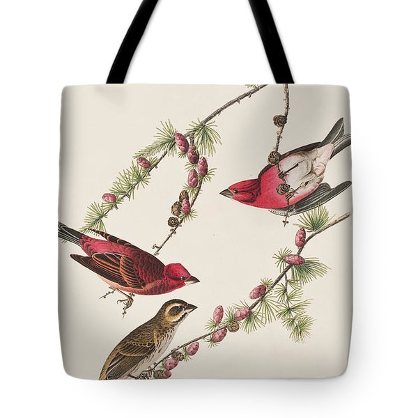 Purple Finch Tote Bag by John James Audubon