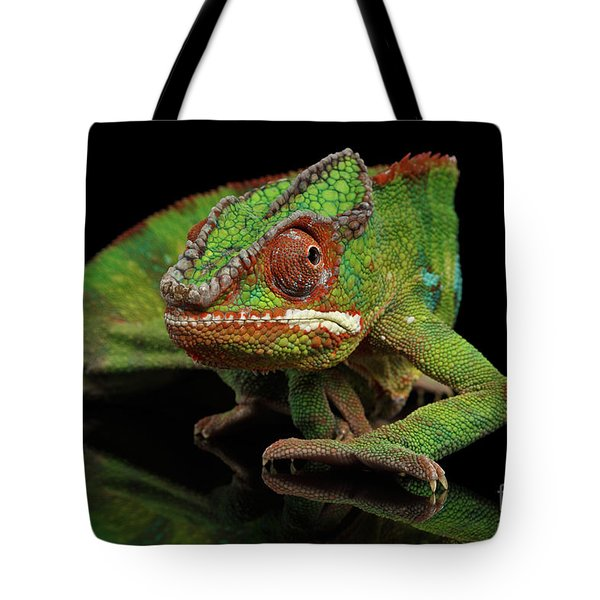 Sneaking Panther Chameleon, Reptile With Colorful Body On Black Mirror, Isolated Background Tote Bag by Sergey Taran
