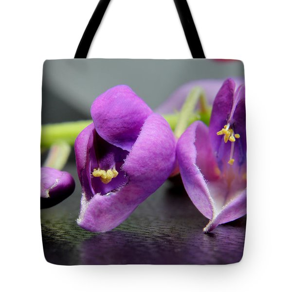 2010 Wisteria Blossom Up Close 1 Tote Bag by Robert Morin