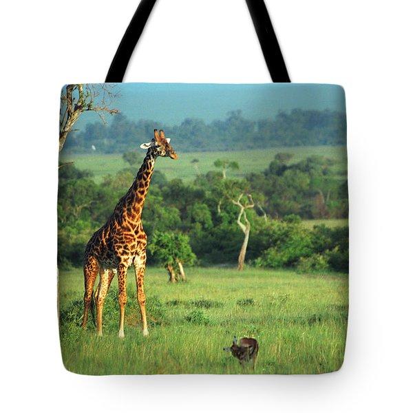 Giraffe Tote Bag by Sebastian Musial