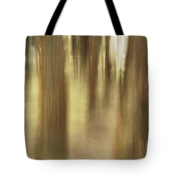 Nature Abstract Tote Bag by Gaspar Avila