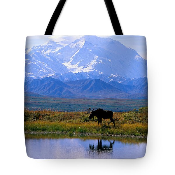 Denali National Park Tote Bag by John Hyde - Printscapes