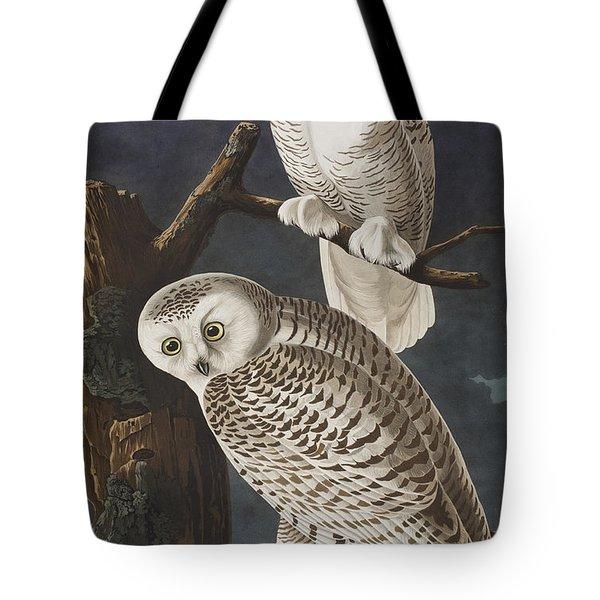 Snowy Owl Tote Bag by John James Audubon