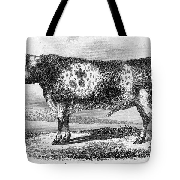 Cattle, 19th Century Tote Bag by Granger