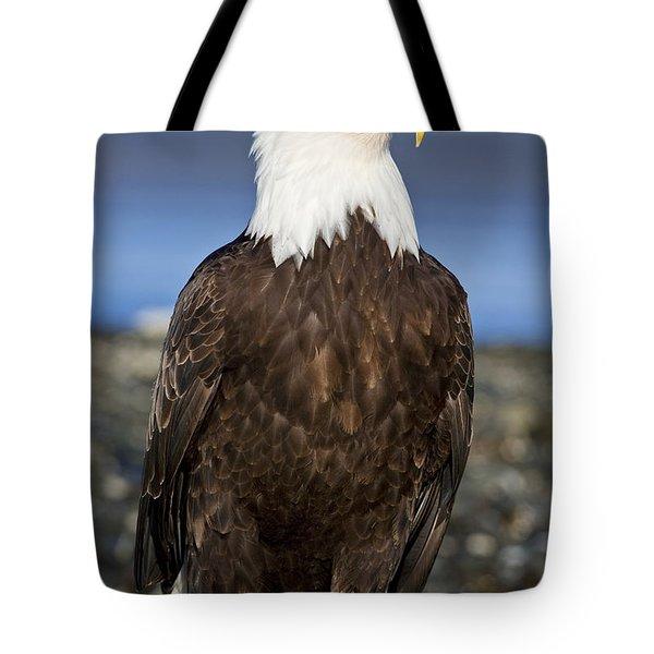 A Bald Eagle Tote Bag by John Hyde - Printscapes