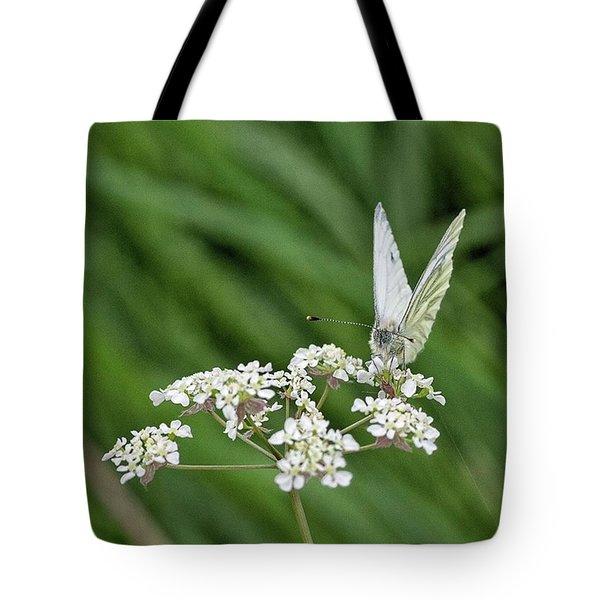 A Green-veined White (pieris Napi) Tote Bag by John Edwards