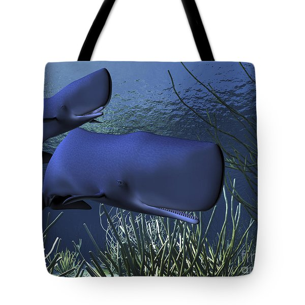 A Mother Sperm Whale Escorts Her Calf Tote Bag by Corey Ford