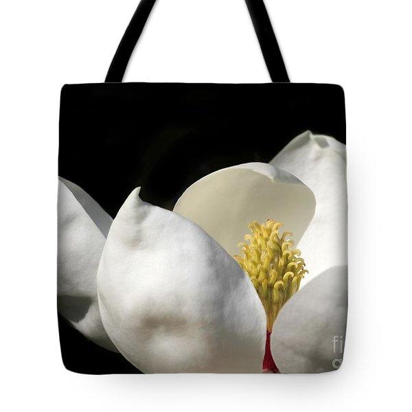 A Peek Inside A Magnolia Tote Bag by Sabrina L Ryan