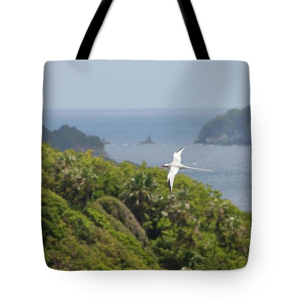 A Red-billed Tropicbird (phaethon Tote Bag by John Edwards