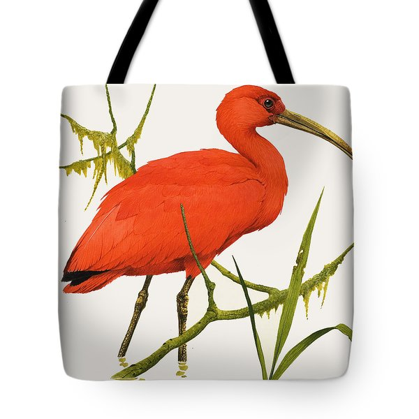 A Scarlet Ibis From South America Tote Bag by Kenneth Lilly