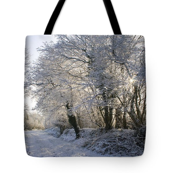 A sparkling Winter Day Tote Bag by Sophie De Roumanie