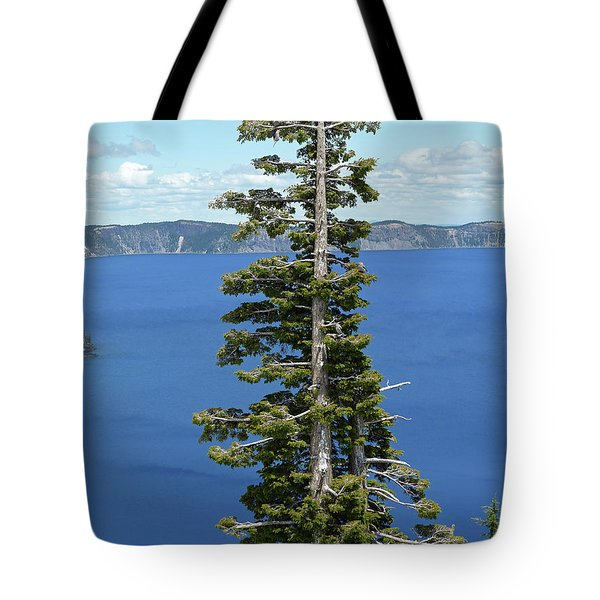A Tree With A View Tote Bag by Methune Hively