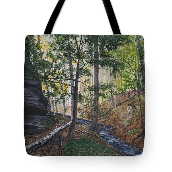A walk in the Woods Tote Bag by Vicky Path