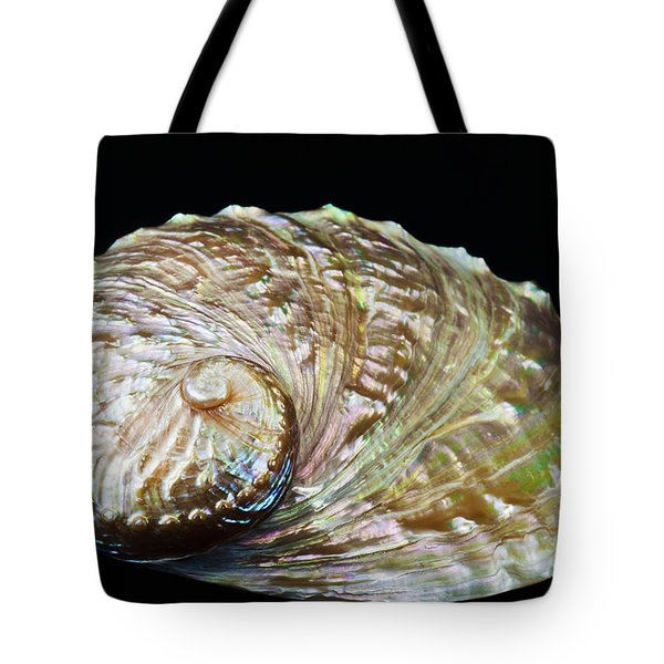 Abalone Shell Tote Bag by Bill Brennan - Printscapes