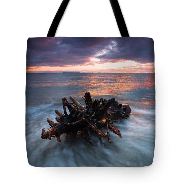 Adrift Tote Bag by Mike  Dawson