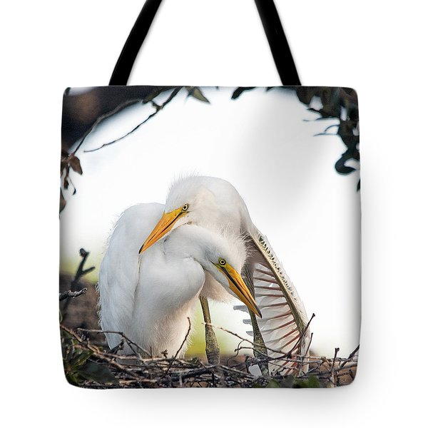 Affectionate Chicks Tote Bag by Kenneth Albin