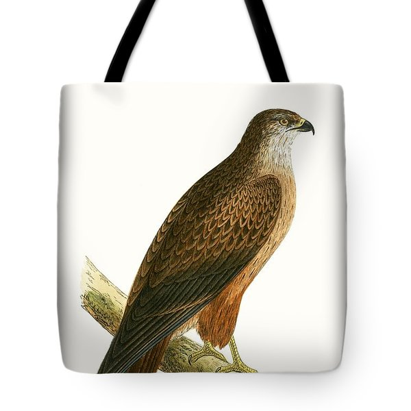 African Buzzard Tote Bag by English School