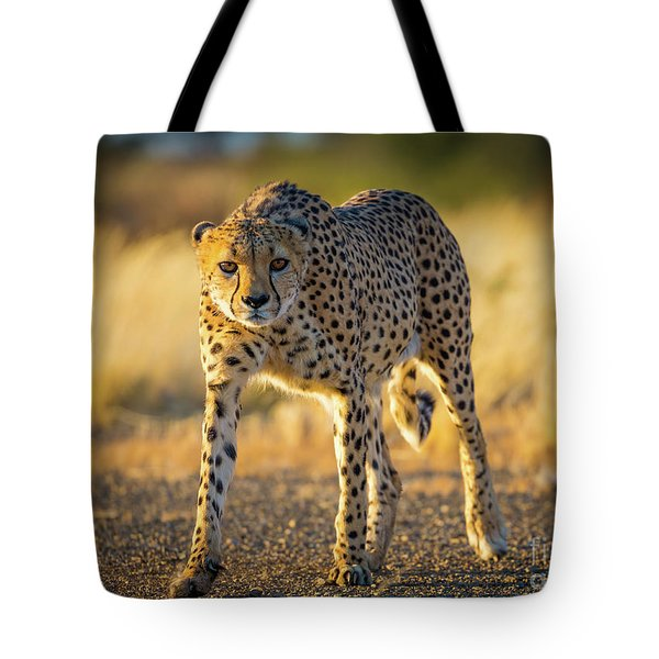 African Cheetah Tote Bag by Inge Johnsson