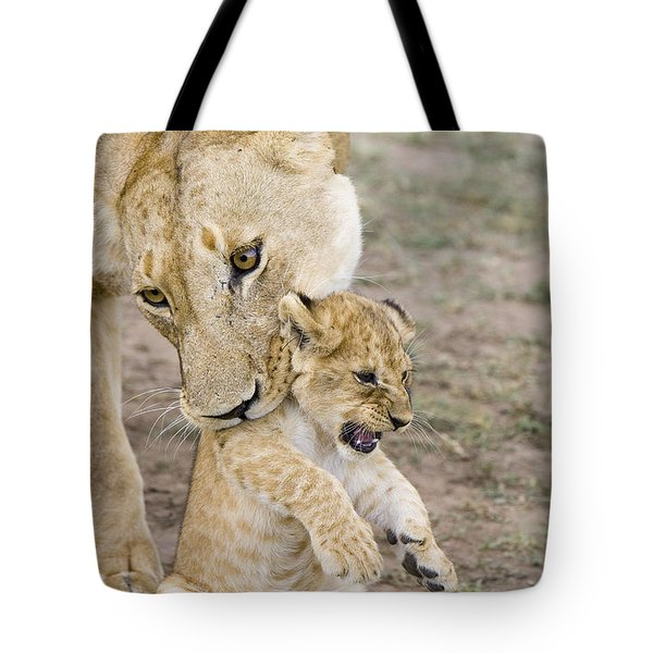 African Lion Mother Picking Up Cub Tote Bag by Suzi Eszterhas