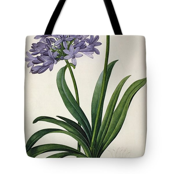 Agapanthus Umbrellatus Tote Bag by Pierre Redoute