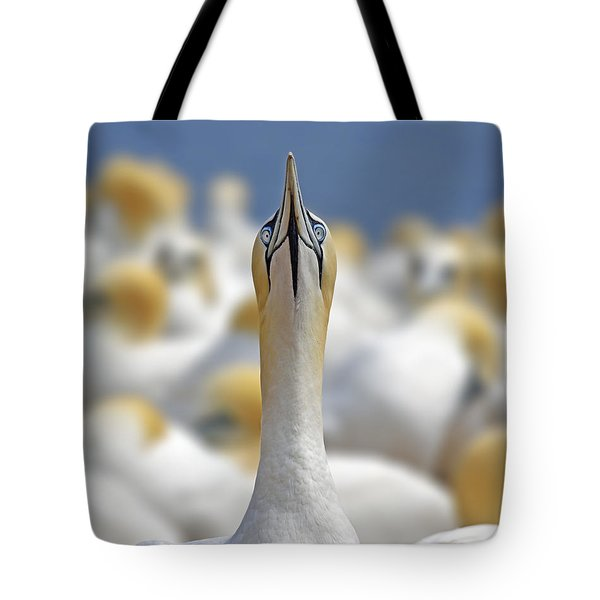 Ahead Tote Bag by Tony Beck