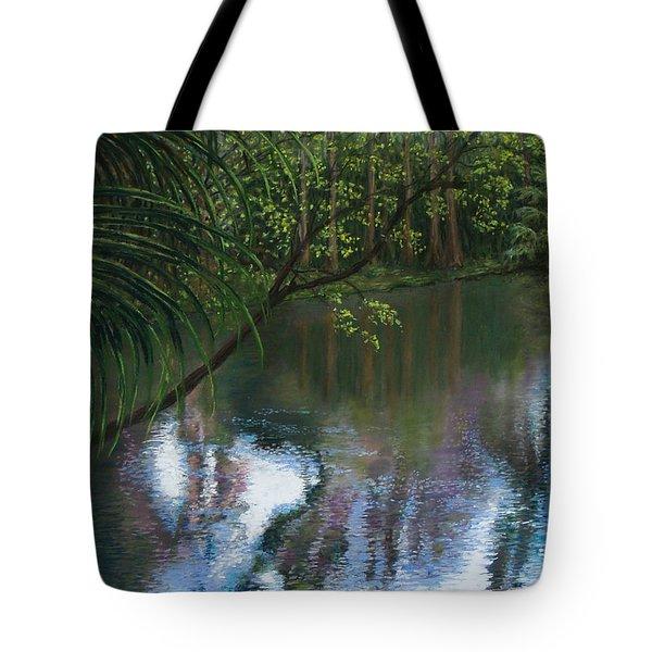 Alafia River Reflection Tote Bag by Susan Jenkins