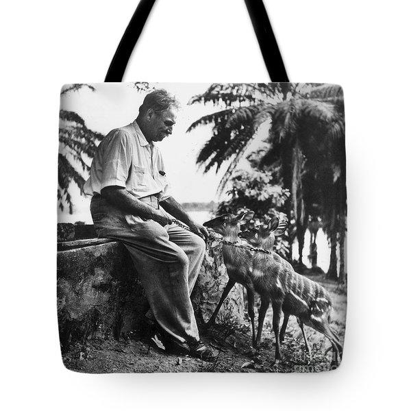 Albert Schweitzer Tote Bag by Granger