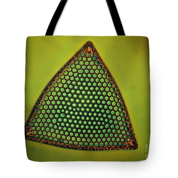 Algae, Diatom, Triceratium Ladus, Lm Tote Bag by Eric Grave