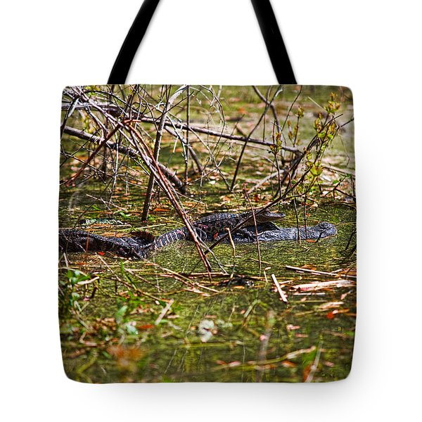 All Aboard Tote Bag by Christopher Holmes