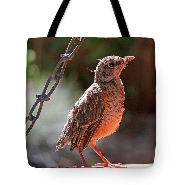 All Aglow Tote Bag by Donna Kennedy