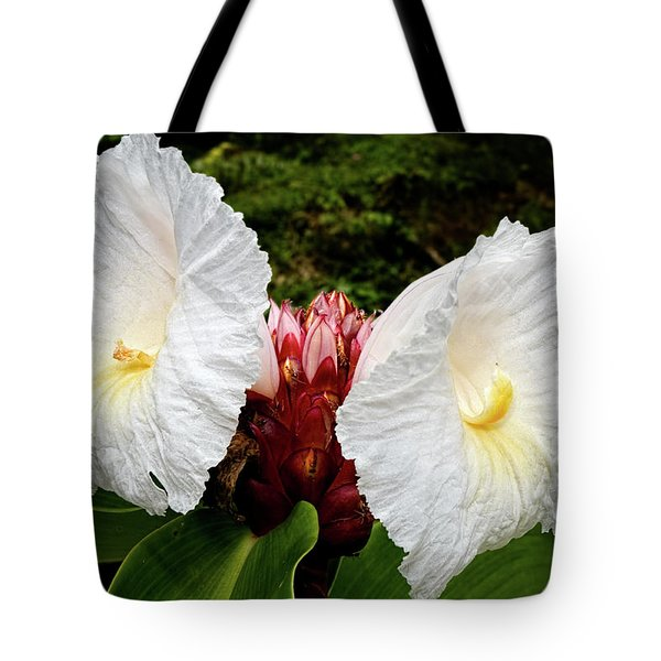 All Ears Tote Bag by Christopher Holmes