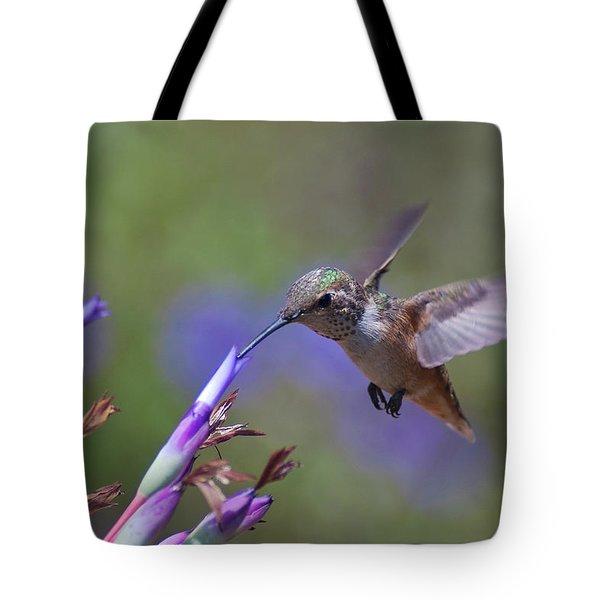 Allen's Hummingbird Tote Bag by Mike Herdering