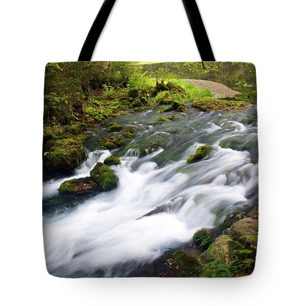 Alley Spring Branch Tote Bag by Marty Koch